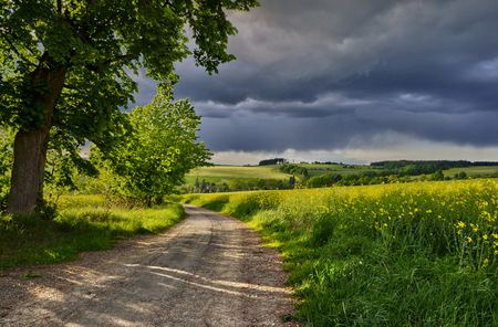 Spring landscape with a path before the storm photo
