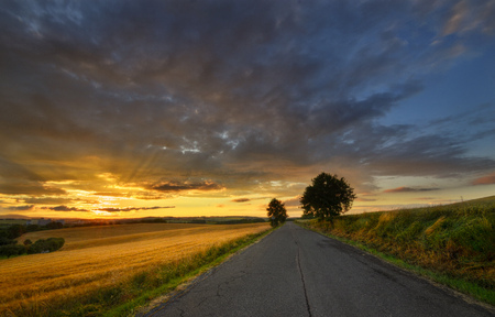 summer evening with sunset in countryside photo