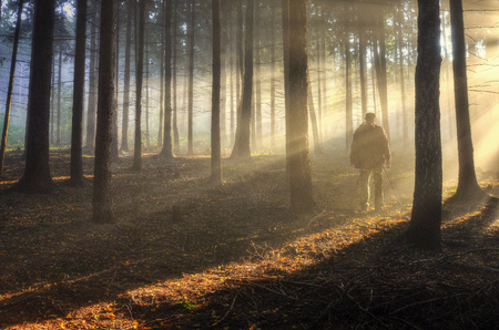 Photographer in misty haze forest in autumn forest photo