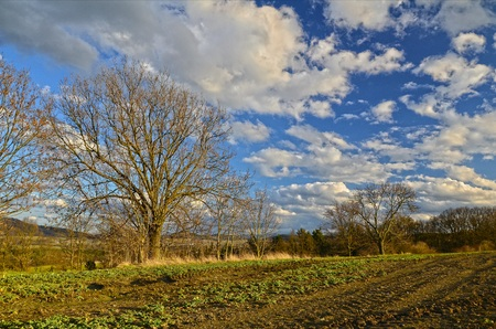 wakening: March day with an amazing sky over wakening field