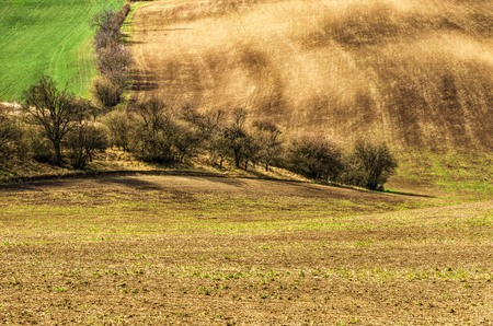 rains: Undulating fields after heavy rains in Moravia