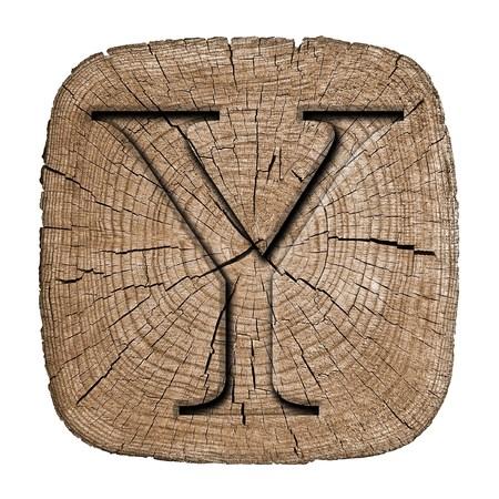 Wooden alphabet block, letter Y Zdjęcie Seryjne