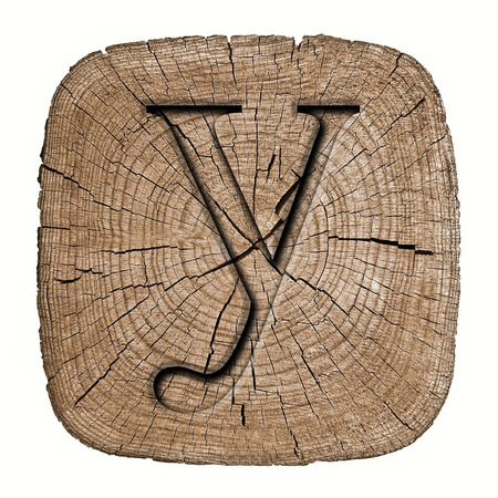Wooden alphabet block, letter y photo