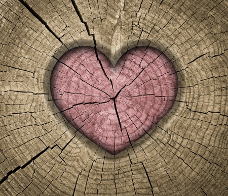 heart on wooden background photo