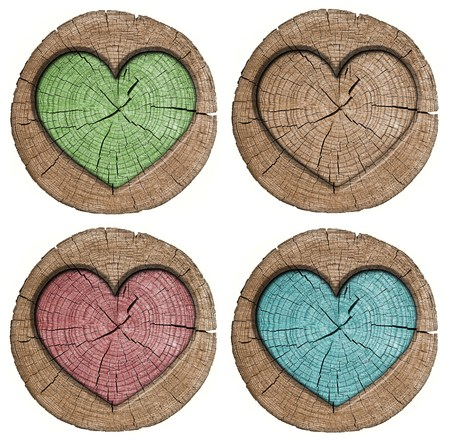 Set woode heart on white background photo