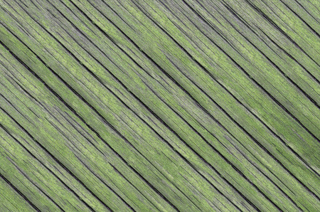 Wood texture. Lining boards wall. Wooden background pattern. Showing growth rings. green Colour Stock Photo