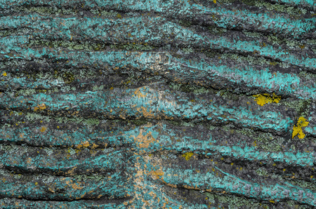 old spotty stained concrete wall texture background. blue, gray color. covered with moss