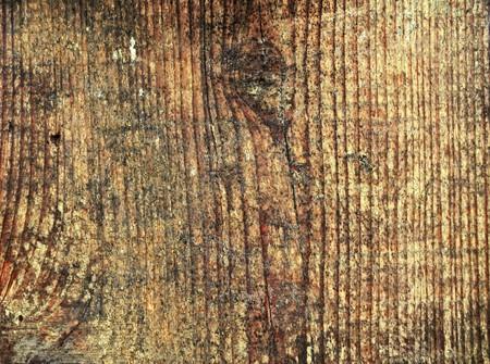 close-up � l'ancienne cl�ture en bois