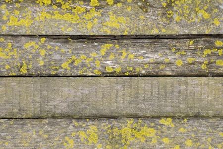 Cl�ture de bois Banque d'images