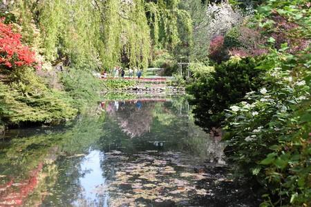 Pond, the garden Фото со стока