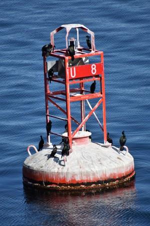 cormorant and beacon Stock Photo