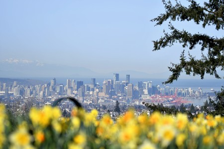 Vancover DT from Burnaby mountain park