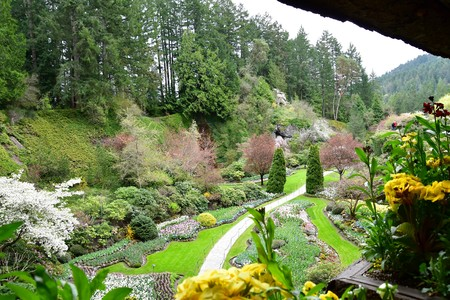 The Sunken garden of the Butchart Gardens.