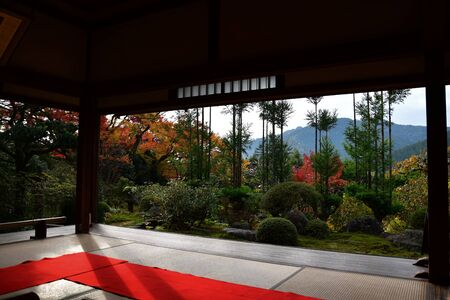 Beautiful Garden Scenery Seen from the Back of a Japanese-Style Guest Room.         Ohara Kyoto