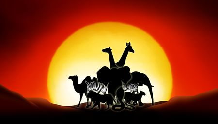 lonesome animals in a sunset of the sahara desert Stock Photo - 4931909
