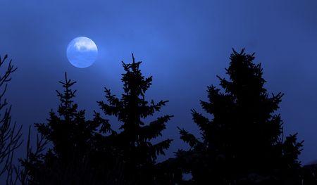 ドイツの黒い森の冬 写真素材
