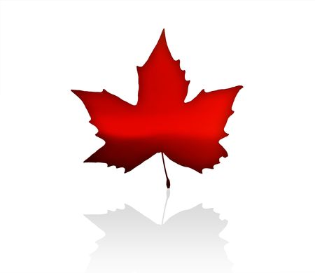 The Flag of Canada with maple leaves photo