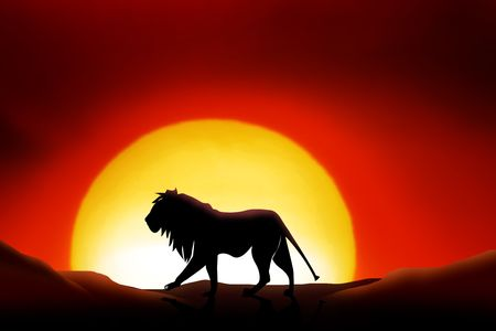 rises: lonesome lion in a sunset of the sahara desert Stock Photo