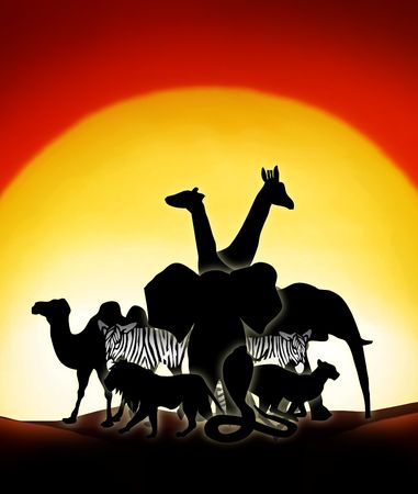 lonesome animals in a sunset of the sahara desert