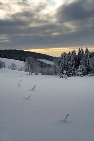 Winter in the Black Forest in Germany photo