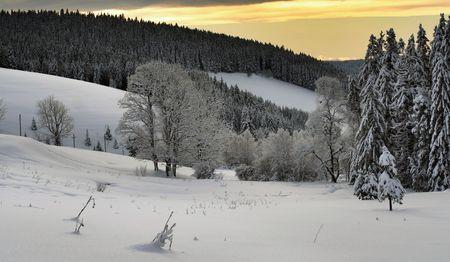 Winter im Schwarzwald in Deutschland