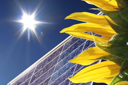 sunflower with bright sun light and blue sky and solar panel photo