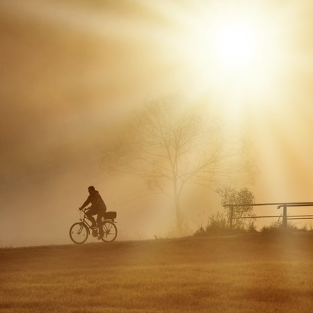 biker is driving with his bike on the bridge with sunset photo