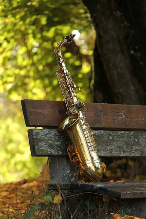 alto: old grungy saxophone in the nature in autumn Stock Photo