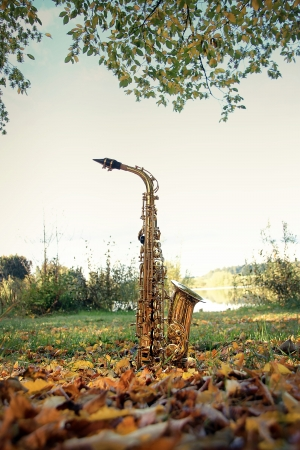 pushbuttons: old grungy saxophone in the nature in autumn Stock Photo