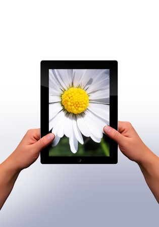 working with a modern flat tablet pc photo
