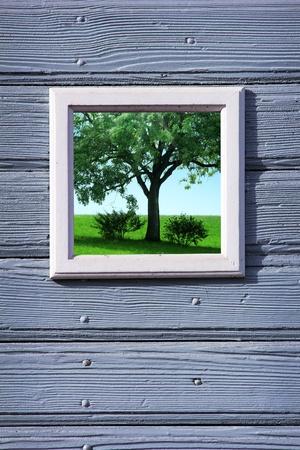 Ancien cadre en bois blanc pour votre texte Banque d'images - 11316122