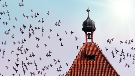 old tower with bell and many flying birds Stock Photo