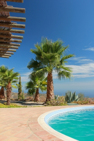 Tropical Scene with swimming pool and nice palm Stock Photo - 15501400