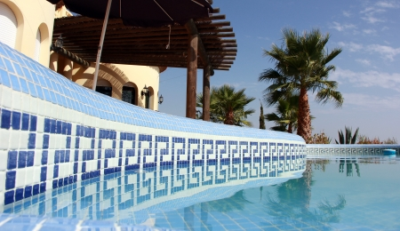Scène tropicale avec piscine et joli palmier Banque d'images - 15501396