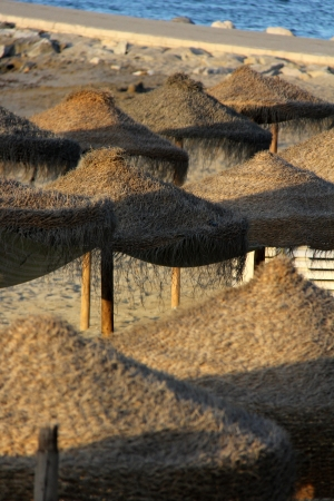 many straw umbrellas on the seaside at the beach Stock Photo - 15236898
