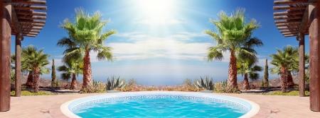 Scène tropicale avec piscine et joli palmier Banque d'images - 15301290
