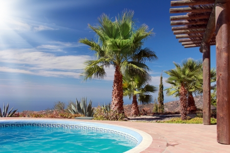 Tropical Scene with swimming pool and nice palm Stock Photo - 15301291