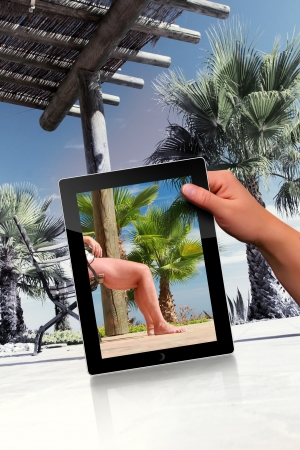 Faked relaxation scene with palm and tablet pc Stock Photo - 15526135