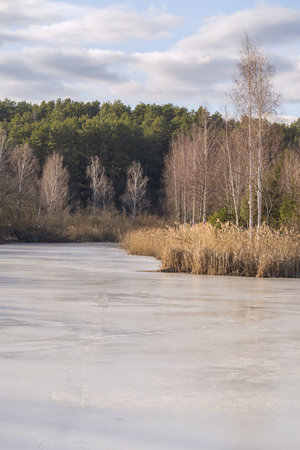frozen lake: Frozen lake, in the woods. Stock Photo