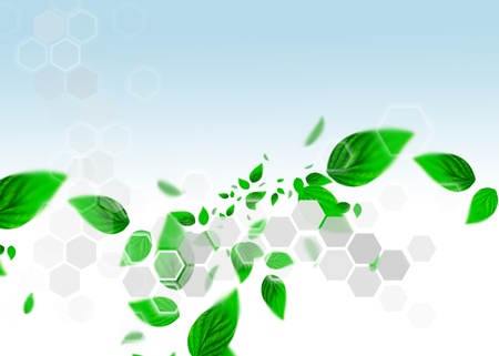 Spring leafs abstract background with place for your text. Ecological concept Stock Photo - 11997979