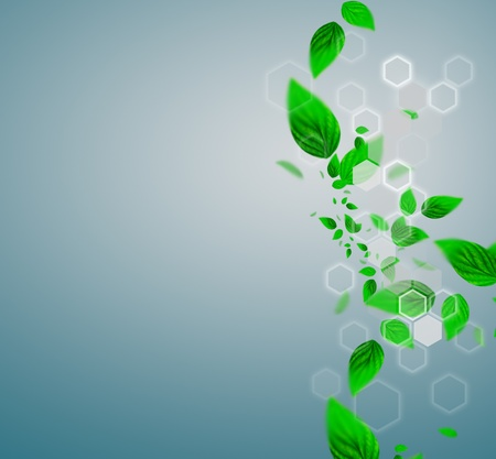 Spring leafs abstract background with place for your text. Ecological concept Stock Photo - 12027149