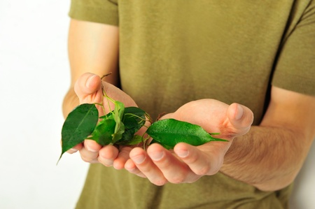 Young masculine healthy man holding plant in hands photo