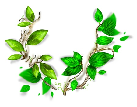 branch with fresh green leaves Stock Photo - 21561866