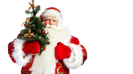 ded moroz: Santa Claus portrait smiling isolated over a white background holding christmas tree