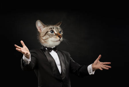 cat head: Business man with cat head