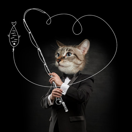 cat head: Business man with cat head fishing