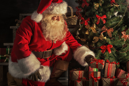 Santa Claus brought gifts for Christmas. Santa is placing gift boxes under Christmas tree