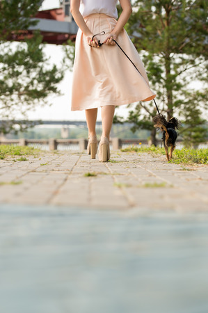 view from behind: Unrecognizable lady walking with her dog on lead in summer park. View from behind Stock Photo