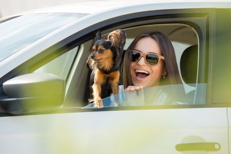 Woman and dog in car on summer travel. Funny dog traveling. Vacation with pet concept. photo