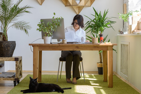 animal woman: Woman working at modern office
